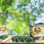 روش های خرید کنسرو سبزی قورمه سرخ شده ساناز